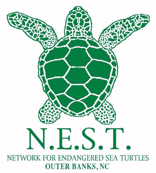 Network for Endangered Sea Turtles