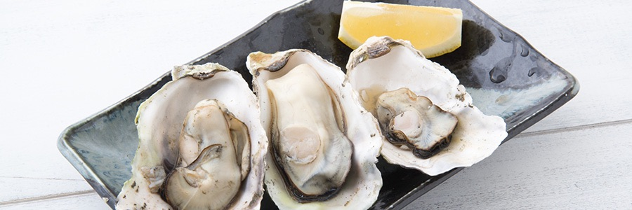Plated Oysters