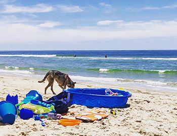 Hatteras Island Summer Beach Reads