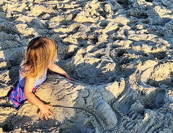 Coastal Distance Learning on Hatteras Island