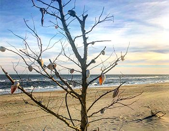 Holidays on Hatteras Island