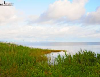A beautiful morning by the Pamlico Sound