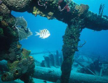 Hatteras Island 3rd Annual Underwater Heritage Symposium