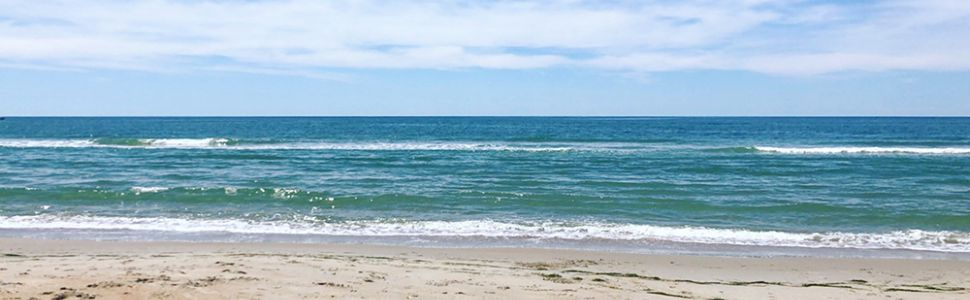 Hatteras Island Summer Beach Reads