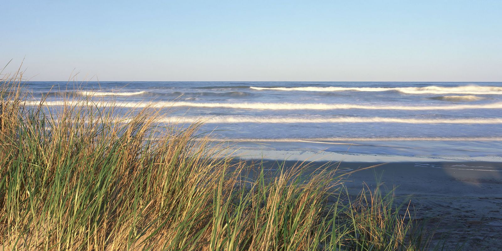 Seagrass and calm waves on Cape Hatteras