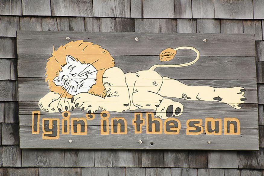 HE151 Lyin In The Sun